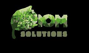 Team logo _ IOM Solutions - fatine loubn