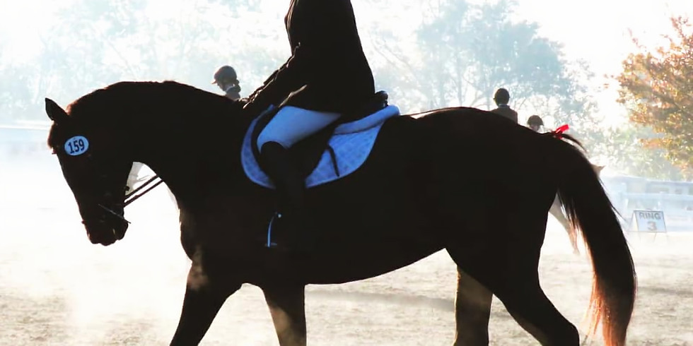 Dressage Differently Winter Series 2020 (1)