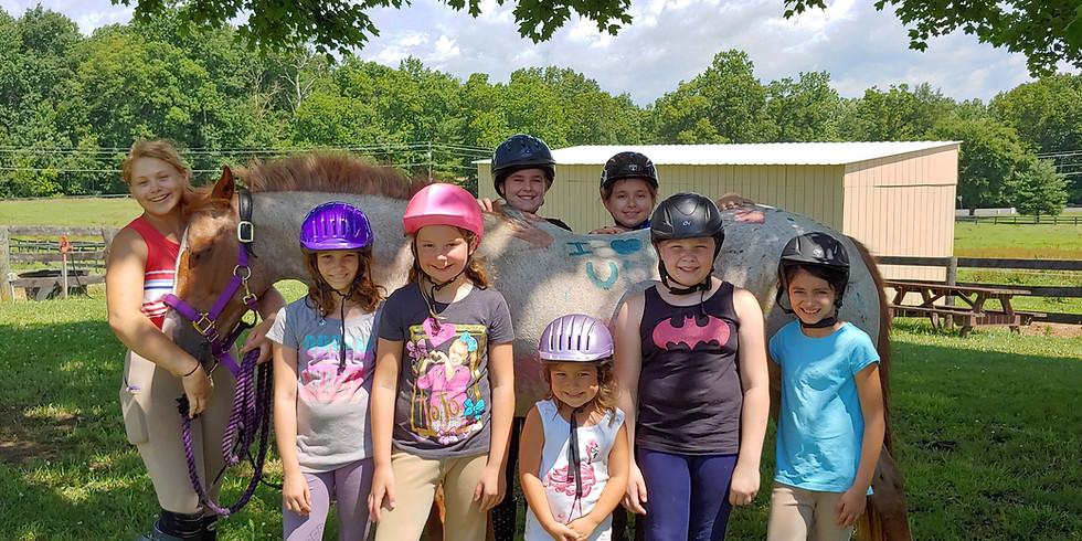 Summer Fun Horse Camp