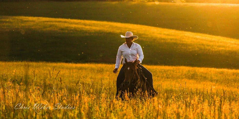 Intro to Natural Horsemanship