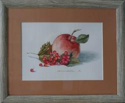 Нина Панюкова Калина с яблоком акварель бумага 25х30