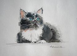 Нина Панюкова Мальчик 25х30 бумага акварель ручка