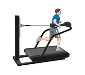 treadmill exercise test | HSIG