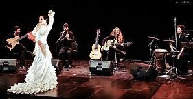 Premiere of Flamenca, February 2014