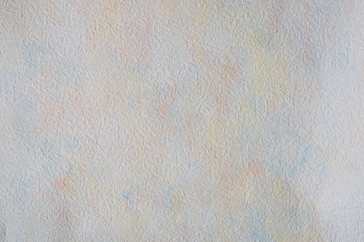 texture458A6418_edited.png