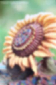 IMG_8536_edited_edited.jpg
