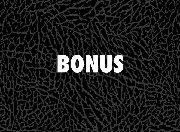 CCD_Projects_BONUS_00.jpg