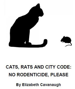 CATS, RATS AND CITY CODE