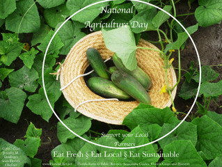 Happy National Agriculture Day