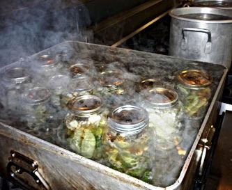 Proccessing pickle jars