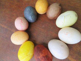 Naturally Dyed Easter Eggs?