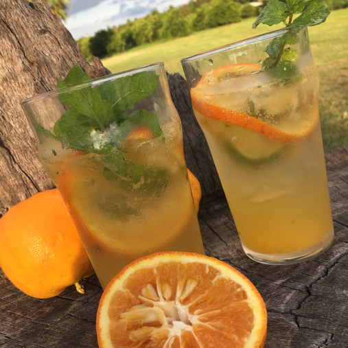 Sour Orange Mojito