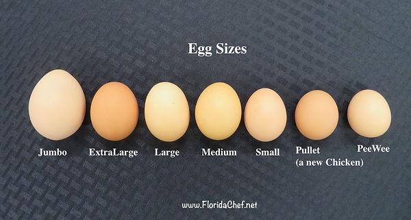 Egg sizes
