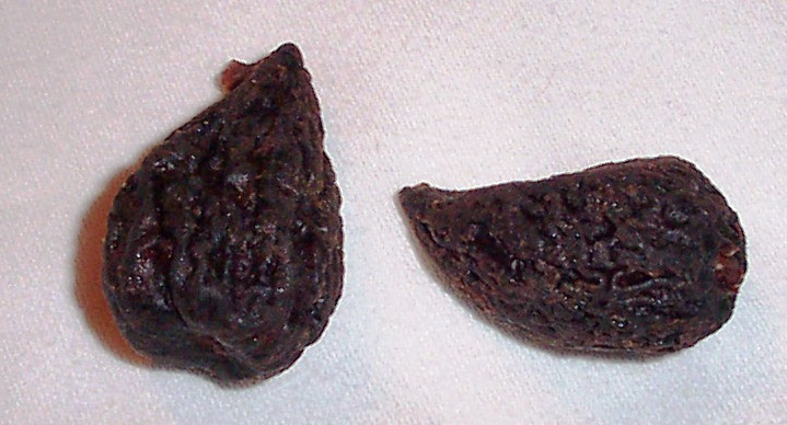 FIG, MISSION, DRIED.jpg