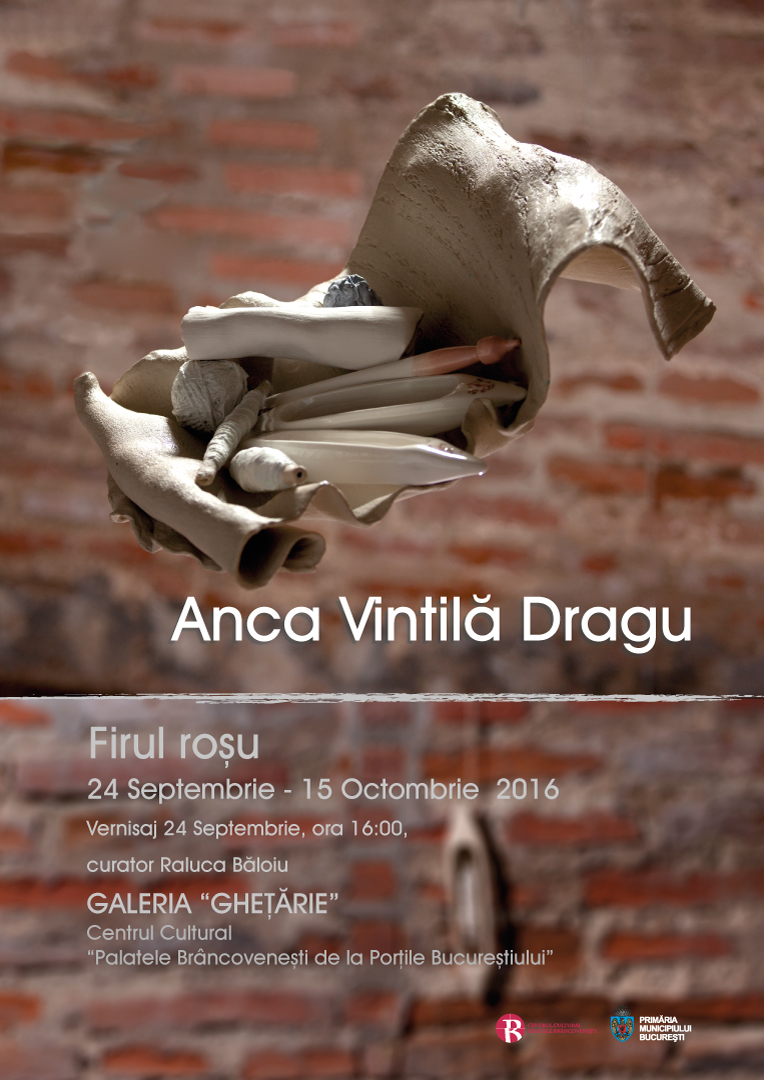 Afis-DRAGU-A2-6-3