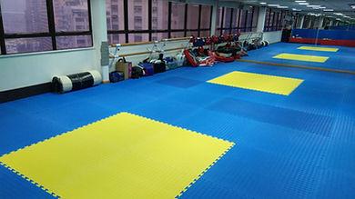 ISA Floor.jpg