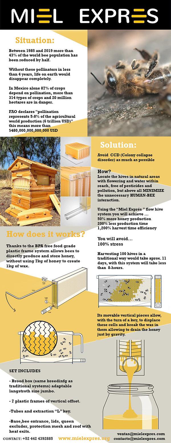 folleto miel expres INGLES.jpg
