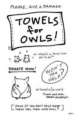 TOWELS FOR OWLS