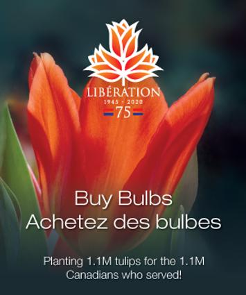 Lib75-DoubleBigBox-floral.png