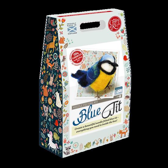 British Birds Blue Tit