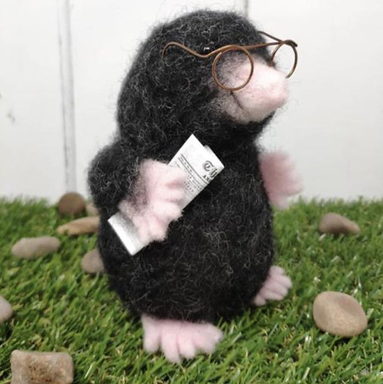 Mister Mole