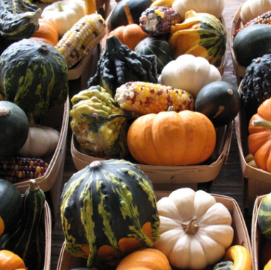 Mixed small decorative gourds