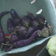 Buena Mulata peppers (hot!)