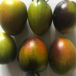 Brad's Atomic grape tomatoes