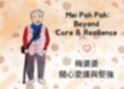 MeiPP_Visual_0305.png