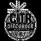 CiTR Logo.png