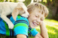 Turf Guys Flea & Tick Spray. Protect your family and pets from blood-sucking pests!! Serving Lake Zurich, Buffalo Grove, Long Grove, Mundelein, Vernon Hills, Libertyville, Wauconda, Crystal Lake, Gurnee, Hawthorn Woods…