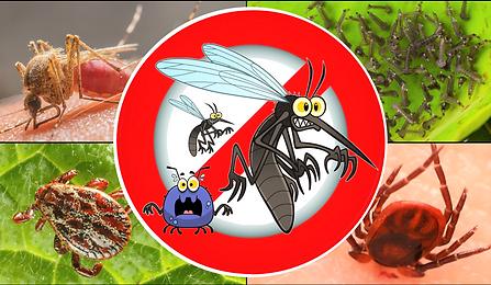 Skeeter Guys Mosquito Tick & Flea Spray