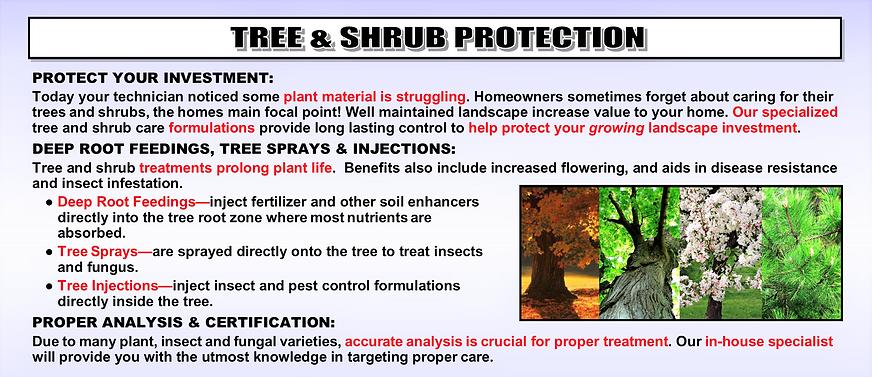 TREE & SHRUB PROTECITON