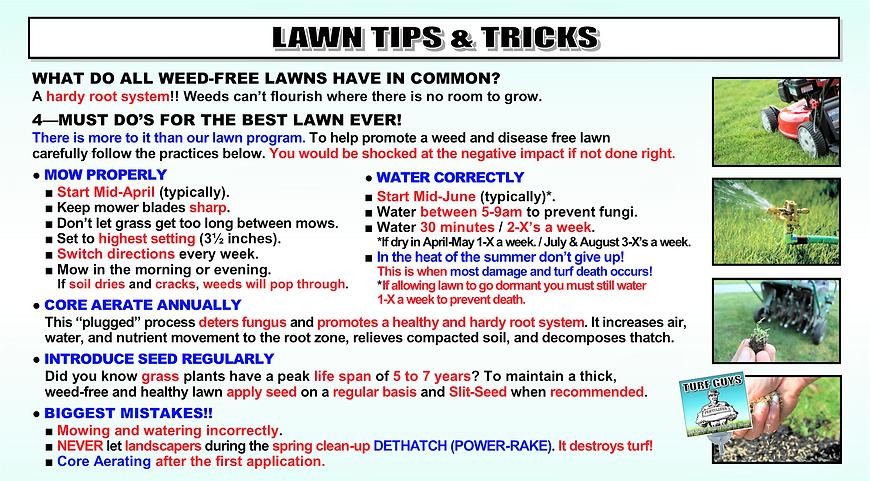 LAWN TIPS & TRICKS