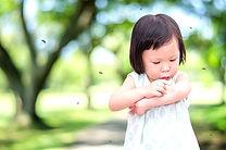 Turf Guys Mosquito Spray Treatments