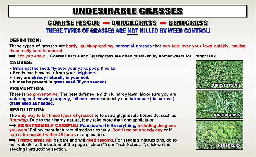 UNDESIRABLE GRASSES