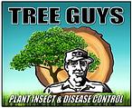 TREE GUY NO STAKE.png