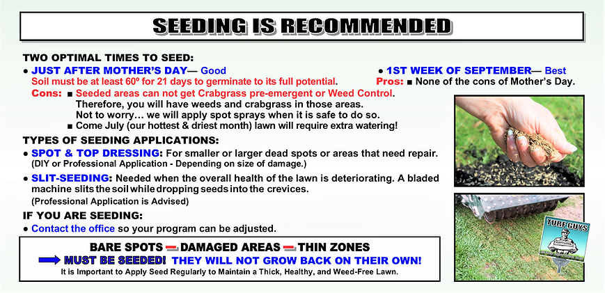 SEEDING IS RECOMMENDED