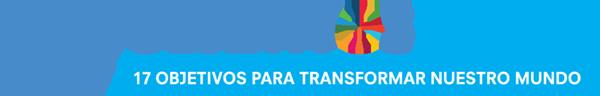 UNSDG_Logo_2016_SP.png