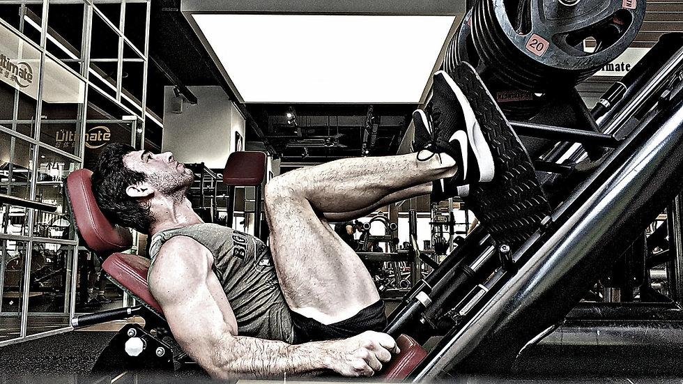 Verity Fitness