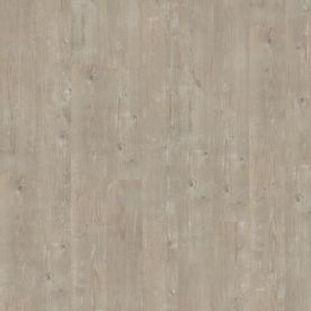 etude-22-pino-pascua.jpg