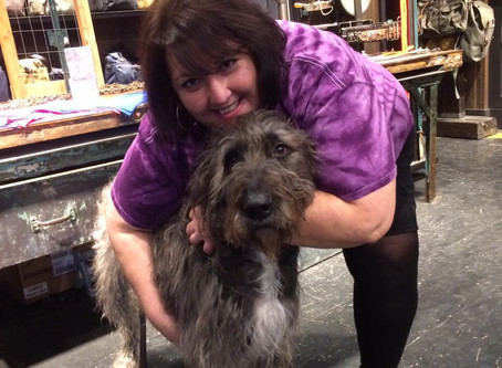The Animal Marketing Podcast, Episode 6: Michele Coppola and Fences for Fido