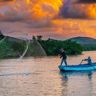 58157A - Sunrise Fishing