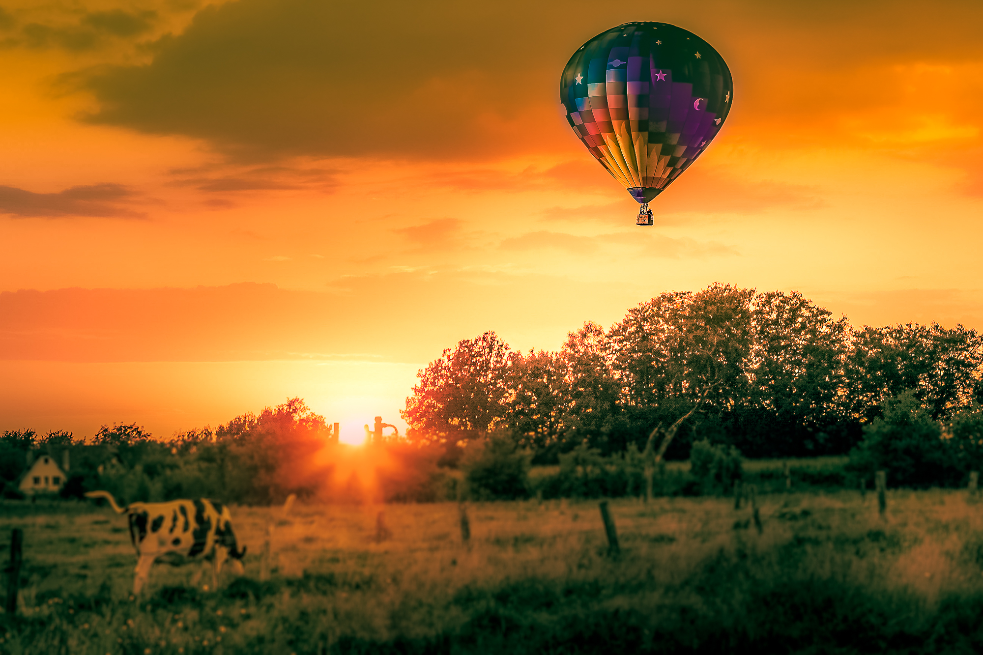 58073A - Hot Air Balloon and Farm