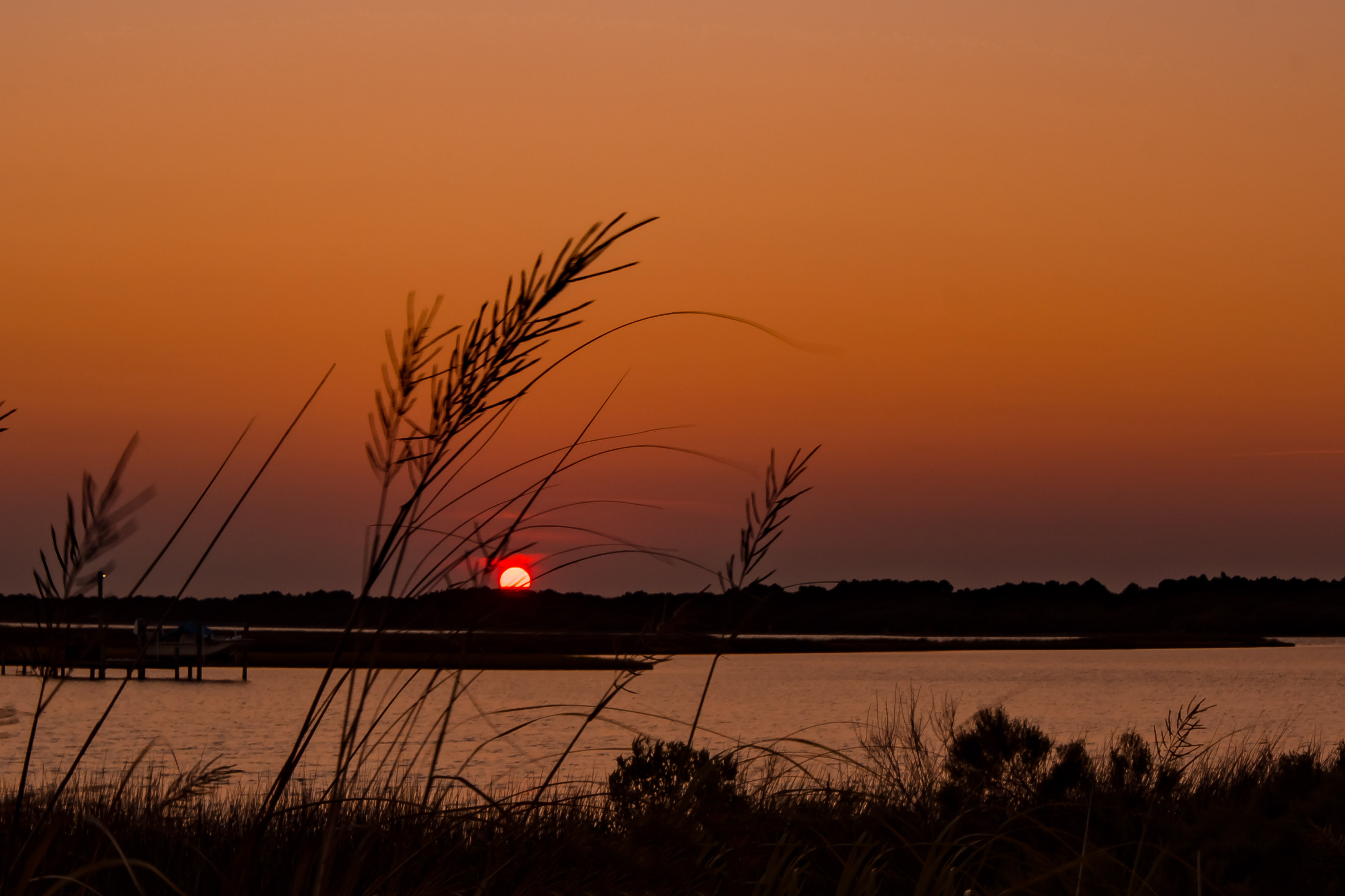 58062A - Sunset and Sea Oats