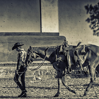 58097B - Cowboy with Horse