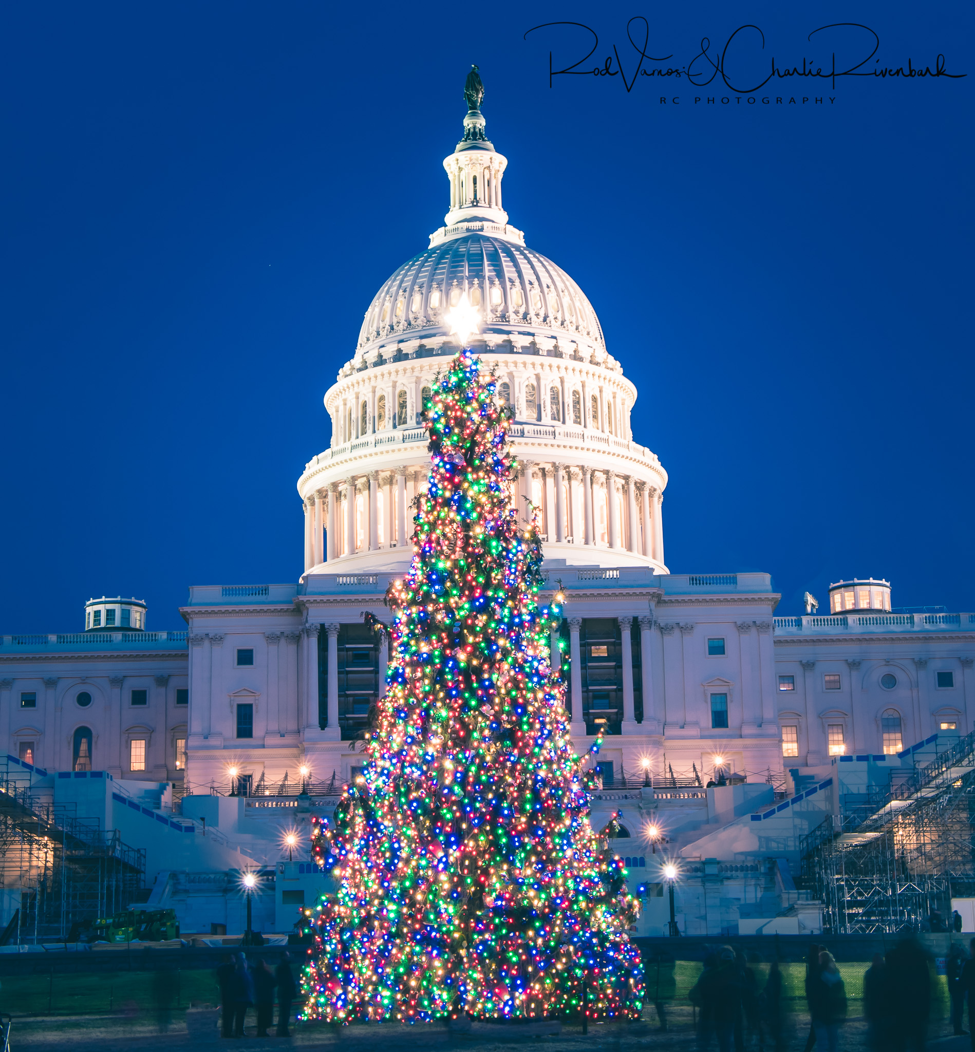 58088F - US Capital w/Christmas Tree