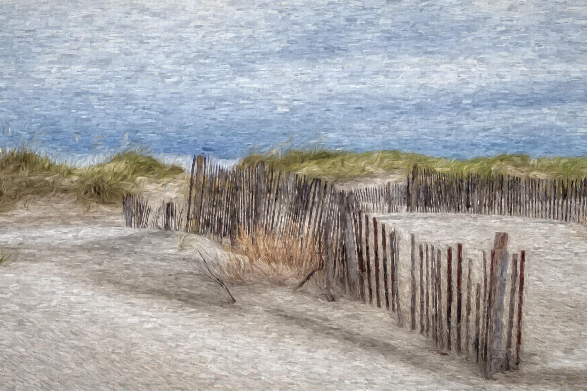 58176D - Beach Life