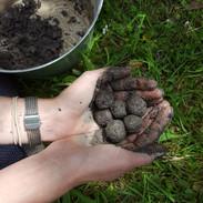 making seed bombs 1.jpg