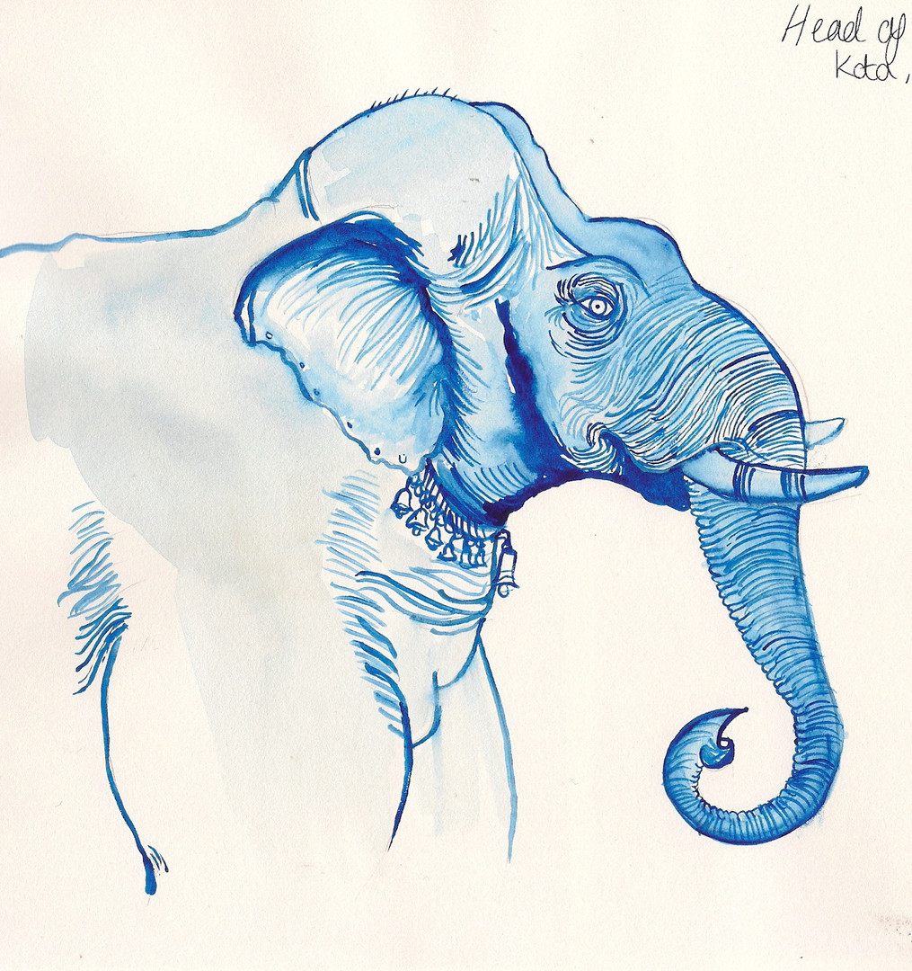 Elestration®︱Elephantidae 2012 © Hayley C Lewis